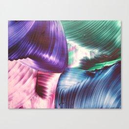 Multi swirls Canvas Print