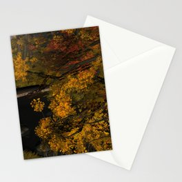Autumn Leaves and Stream Stationery Cards