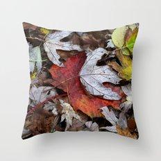 Timecapture Throw Pillow