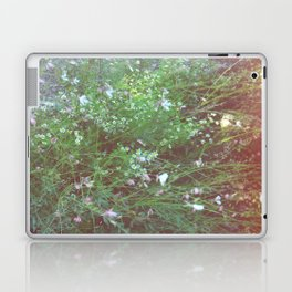 FLOWERS IN THE BRUSH Laptop & iPad Skin
