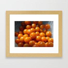 Sungold Framed Art Print