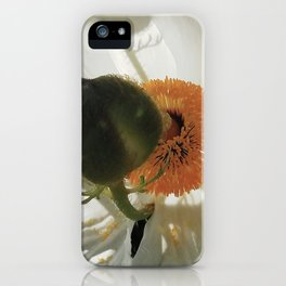 Matilija Poppy iPhone Case