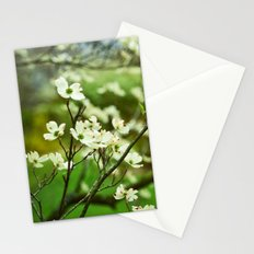 Surrounded by Possibility Stationery Cards