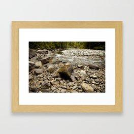 Forest River Framed Art Print