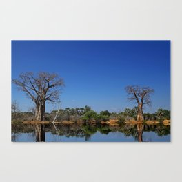 African landscape with baobabs Canvas Print