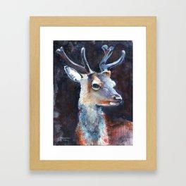 Daim by nicolas Perruche Framed Art Print