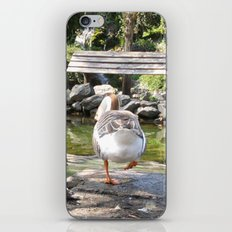 Goose iPhone & iPod Skin