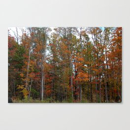 Colorful Cuyahoga Valley Canvas Print