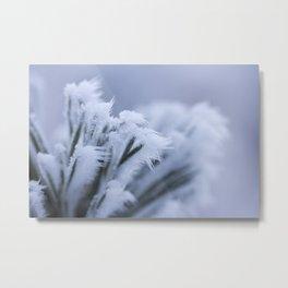 Frozen bush and snow in the woods | nature photo | fine art photo print | travel photo | Winterphoto Metal Print