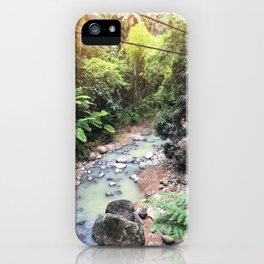 Imaginary Dinosaurs Live Here iPhone Case