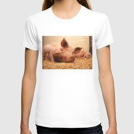Sow and Piglets T-shirt