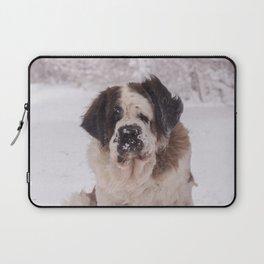 St Bernard dog on the snow Laptop Sleeve