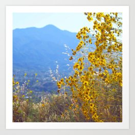 Mountain Blossoms Art Print