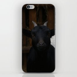 Goat iPhone Skin