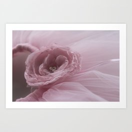 The Rose Art Print