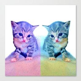 Cute Colorful Cat Couple Canvas Print