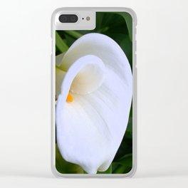 Warburton 14 Clear iPhone Case
