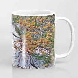 From the Forest to the Sea Coffee Mug