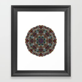 Hallucination Mandala 4 Framed Art Print