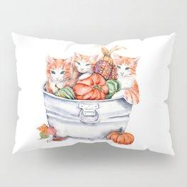 Harvest Kittens Pillow Sham