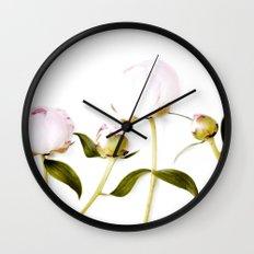 Peony Bulbs Wall Clock