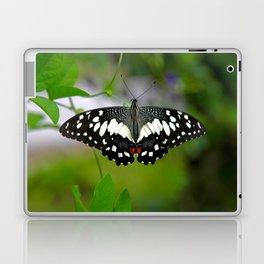 Butterfly Large Laptop & iPad Skin