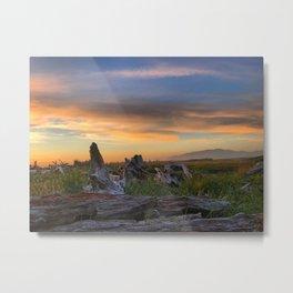 Driftwood Sunset by Seasons Kaz Sparks Metal Print