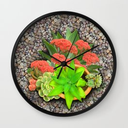 Flowering Crassula Perfoliata Wall Clock