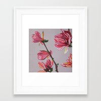 magnolia Framed Art Prints featuring Magnolia by Marjolein