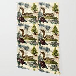 Rustic christmas winter evergreen pine tree woodland chipmunk Wallpaper
