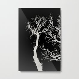 White tree branches silhouette #1 Metal Print