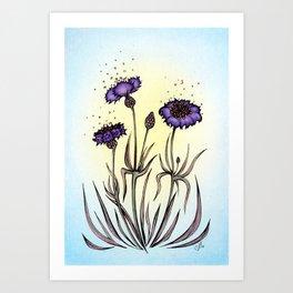 Mystery Garden: Violet cornflower in a blue midday haze Art Print