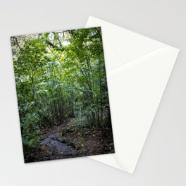 Trail through the Trees in the Rainforest on Mombacho Volcano, Nicaragua Stationery Cards