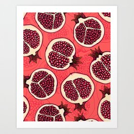 Pomegranate slices 2 Art Print