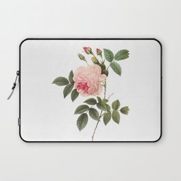 Vintage Pink Rose [04] Laptop Sleeve