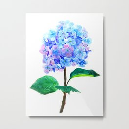 blue purple hydrangea Metal Print