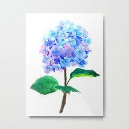 blue purple hydrangea Metal Print