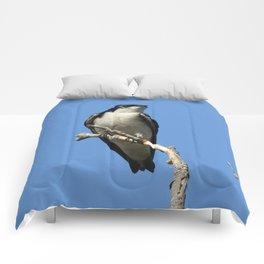 Male Tree Swallow Comforters