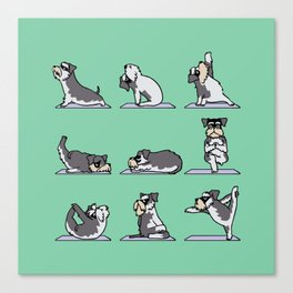 Miniature Schnauzer yoga Canvas Print