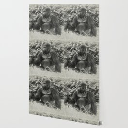 Male gorilla sitting on the ground Wallpaper