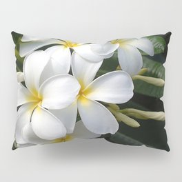 Wild Tropical Hawaiian Plumeria Flowers Pillow Sham