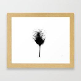 Sex Flower 2 (h) Framed Art Print
