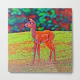 AnimalColor_Antelope_001 Metal Print