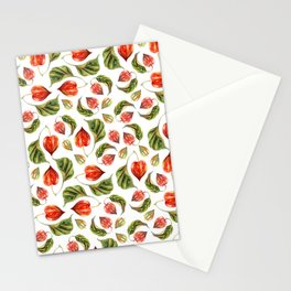 Physalis Stationery Cards