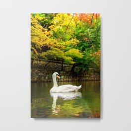 Autumn Swan Lake Metal Print