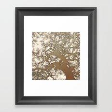 Tree (abstract) Framed Art Print