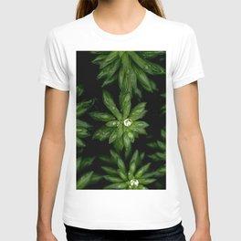 Rhodiola Rosea plant T-shirt