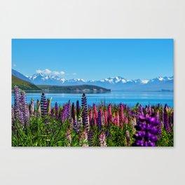 Tekapo Lake - New Zealand Canvas Print