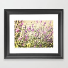Fields of Butterflies Framed Art Print