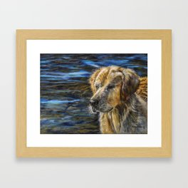 One Wet Golden Retriever by Teresa Thompson Framed Art Print
